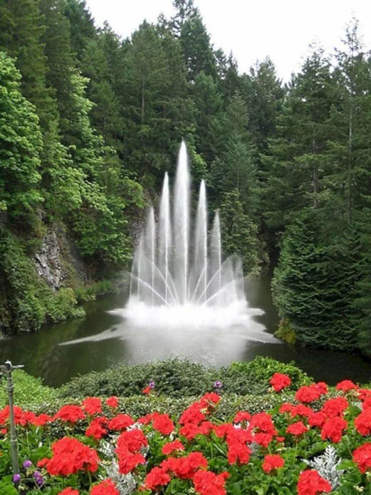 вас картинки фонтана природа наверное слабейшие здесь