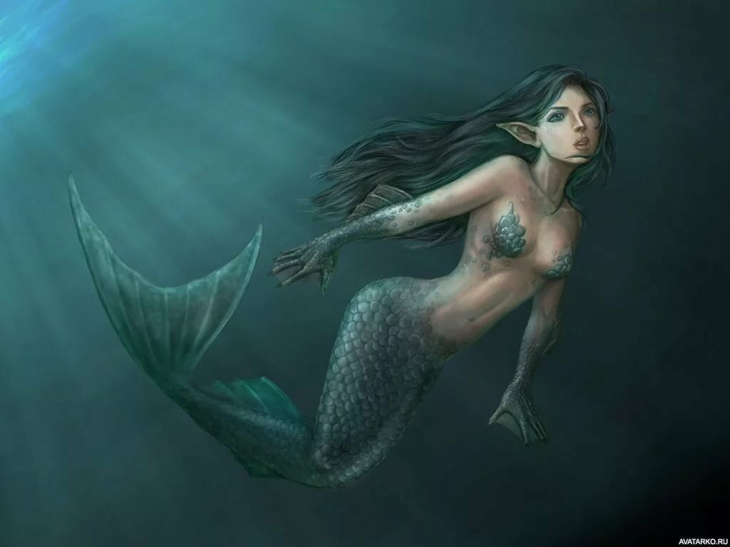 Картинки русалок и история о них