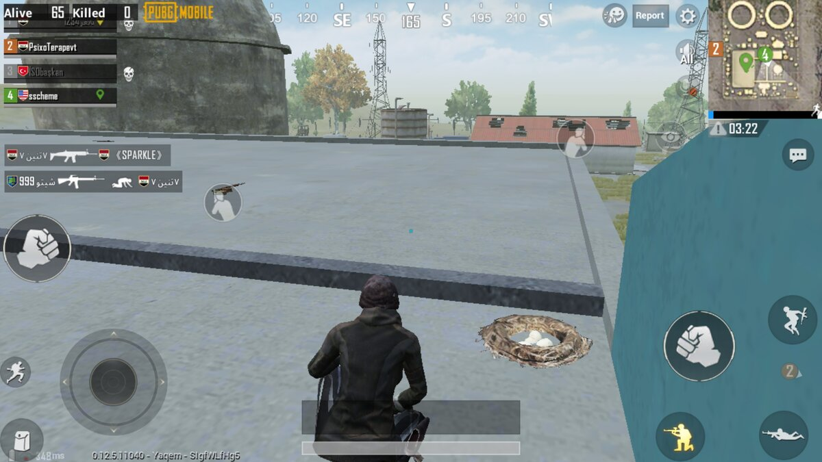 Pet PUBG Mobile Mylta Power
