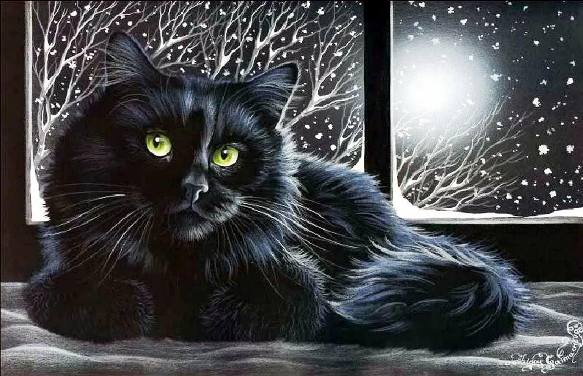 Самые лучшей, открытки черные коты