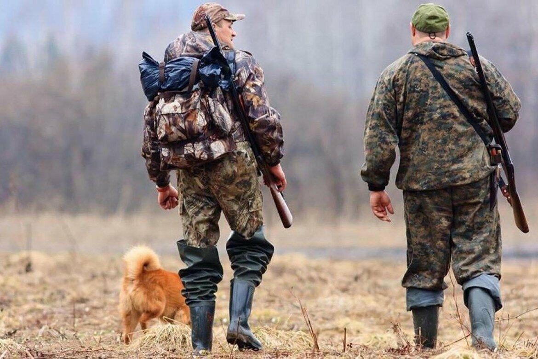 Hunt Expert - приманка для диких копытных животных в Санкт-Петербурге