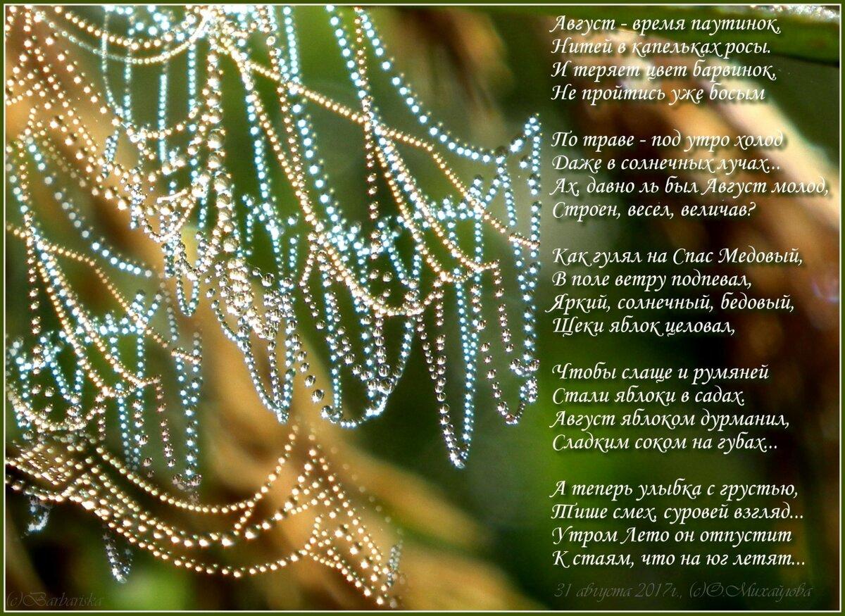 Август открытка со стихами