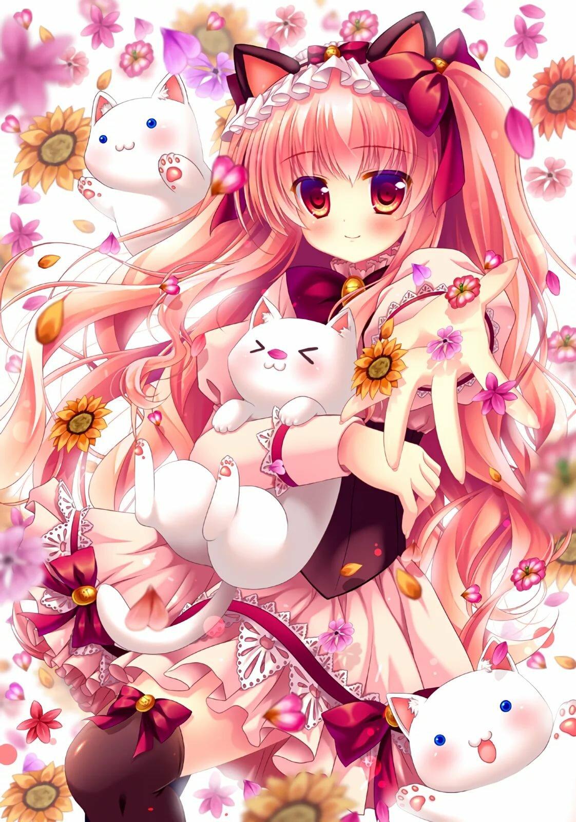 Картинки красивая девушка кошка аниме