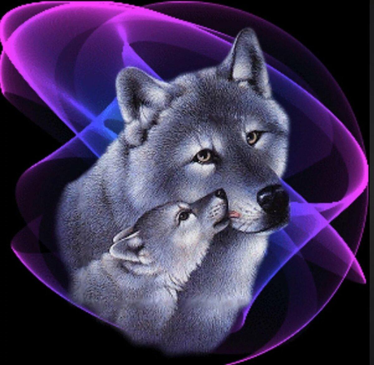 Картинка с анимацией волк, днем рождения