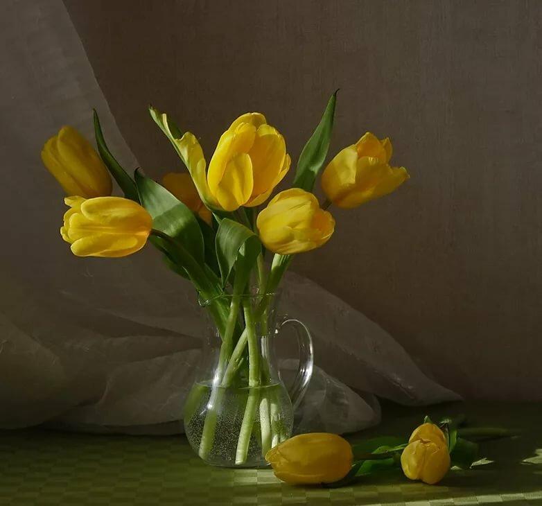 желтые тюльпаны в вазе фото сделать очень