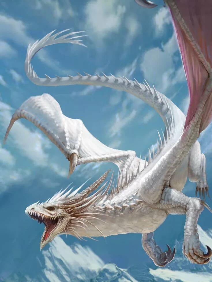 рисунки белых драконов фото стабилизированый