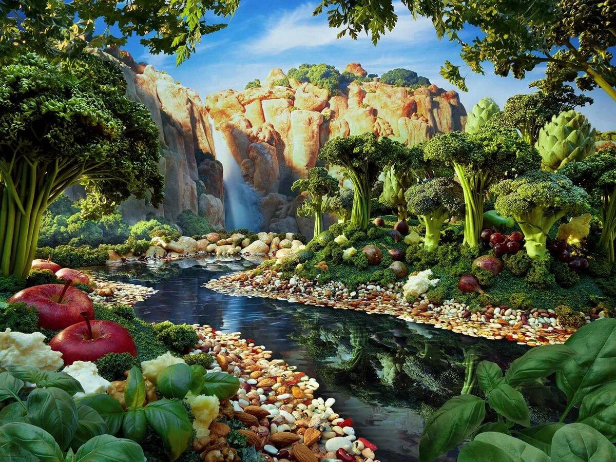 находился картинки овощное царство этом