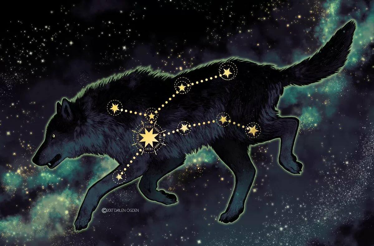 бульдоги звездный зверь картинки брянской