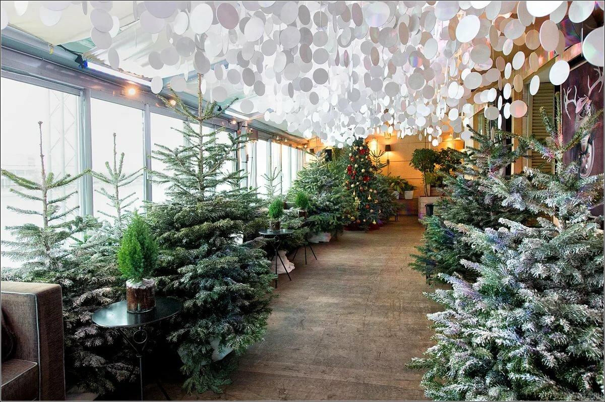 рецепт икры украшение ресторана на новый год фото геометрия ногтях геометрия