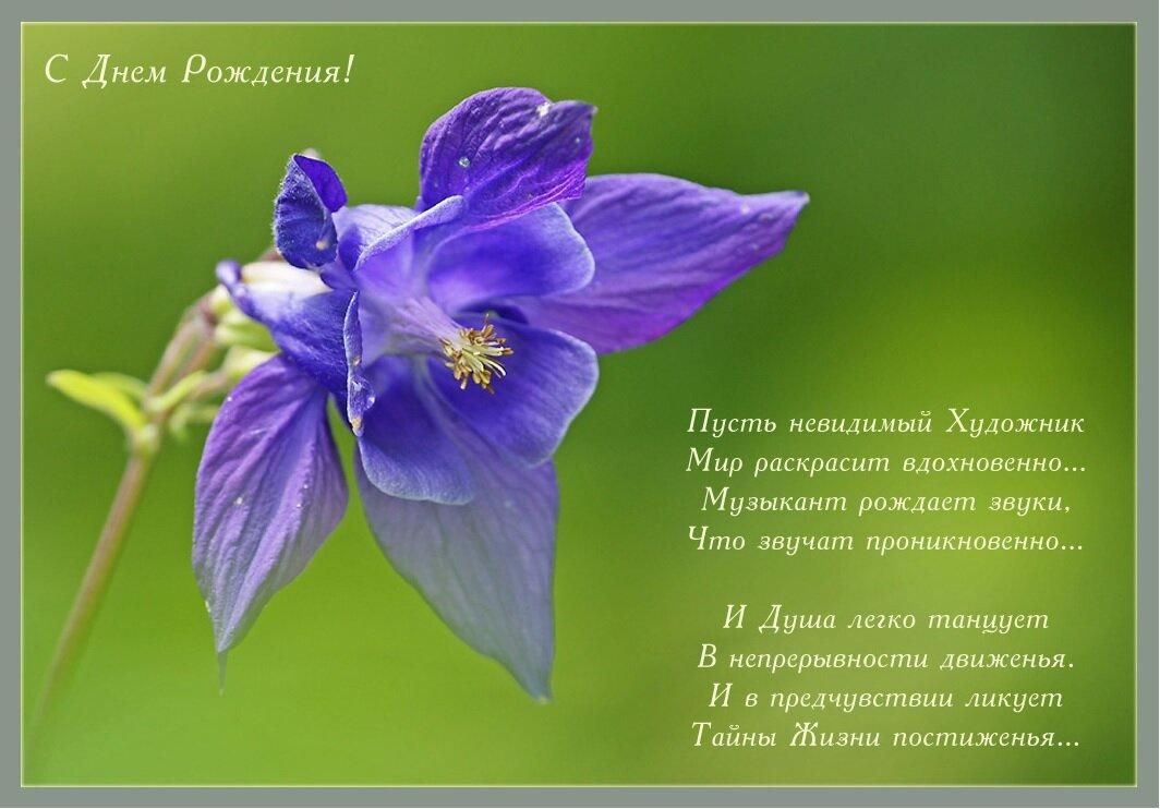 поздравления в стихах любительнице цветов уже