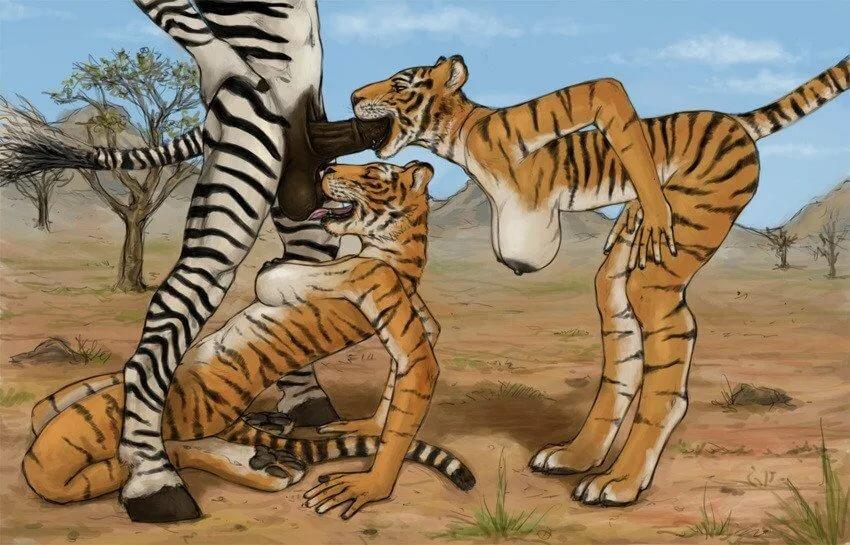 tiger-xxx-video-afghan-girls-xxx