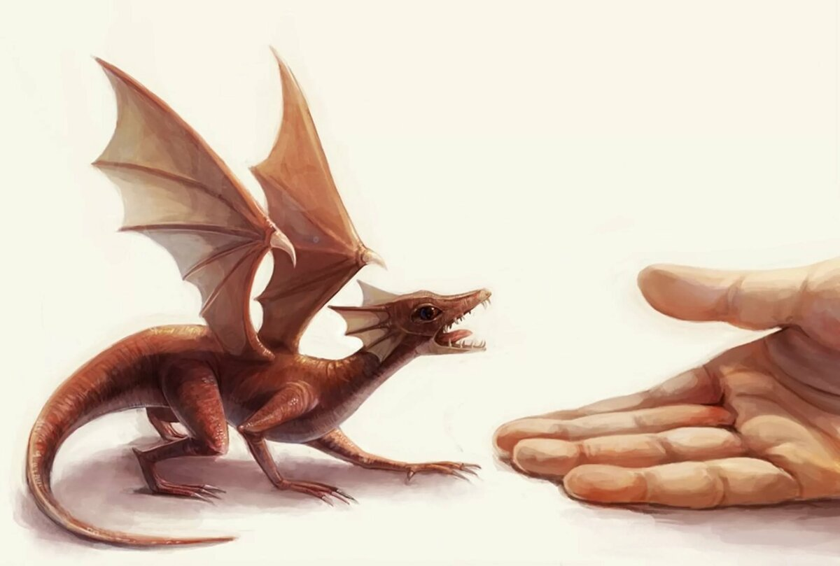 Картинка ручной дракон