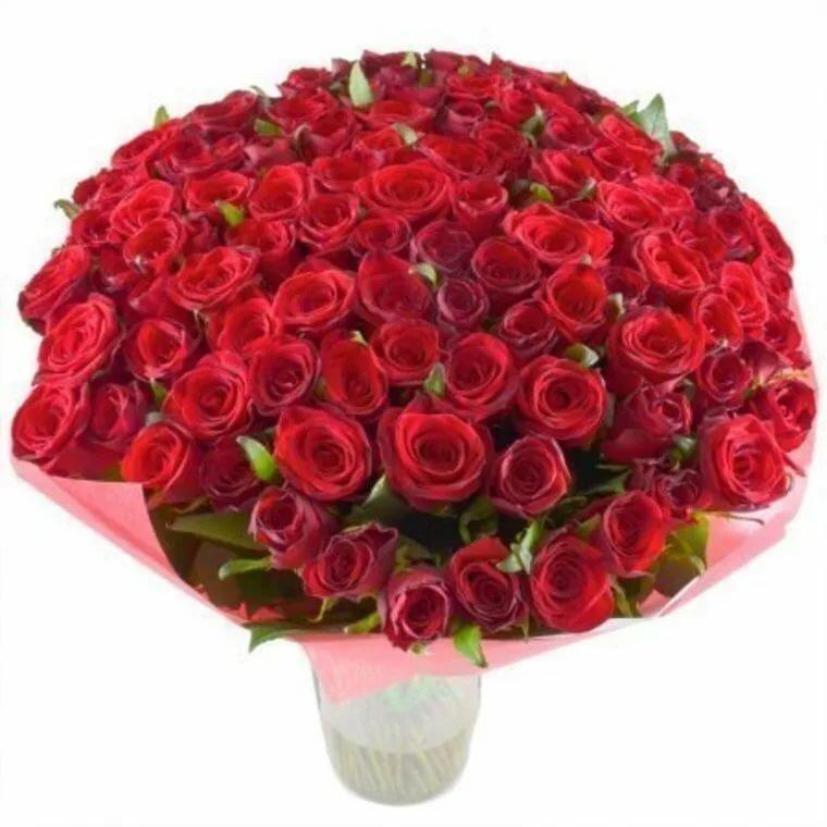 Купить букет 101 бордовая розы в киеве, цветов кременчуг букет