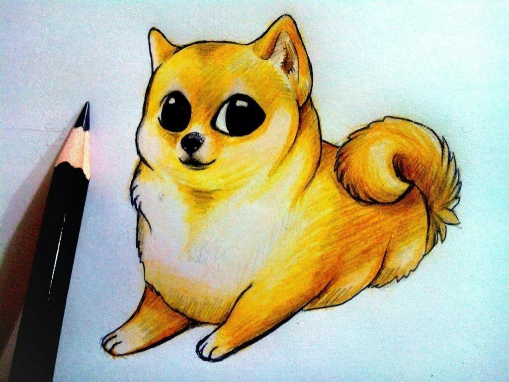 Животные картинки для срисовки