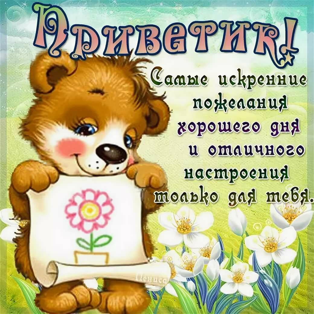 Картинки прикольные смешные с надписями привет хорошего дня