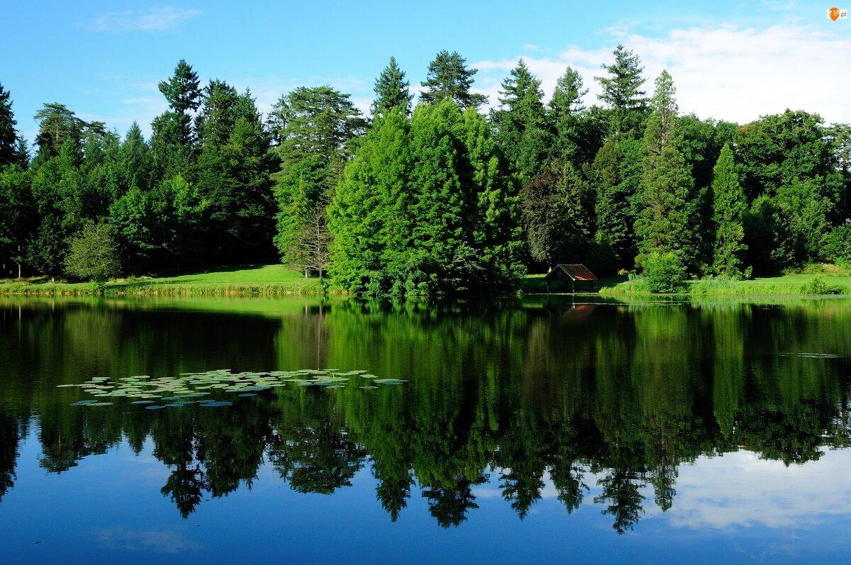 шел берегите озера картинки рассеивателя удалять