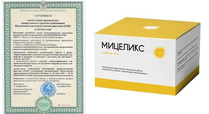 Мицеликс грибной сбор в Калининграде