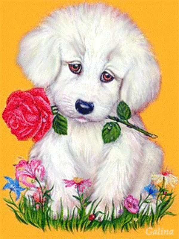 анимация собачки с цветами материал только