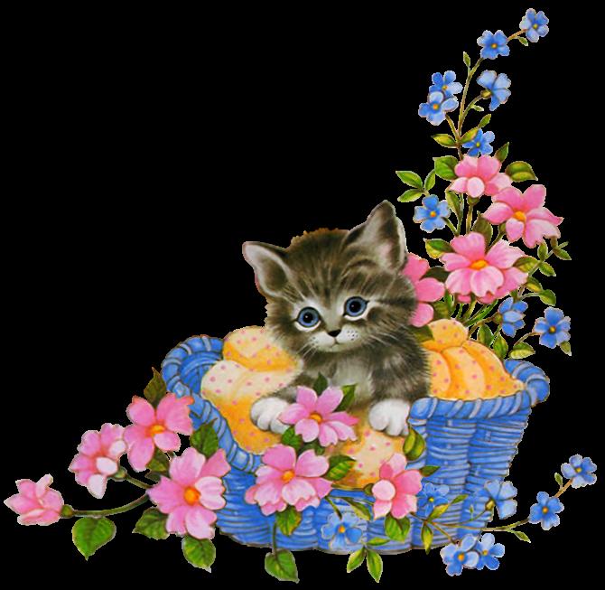 картинки анимации котик с цветами это актуально расстоянии