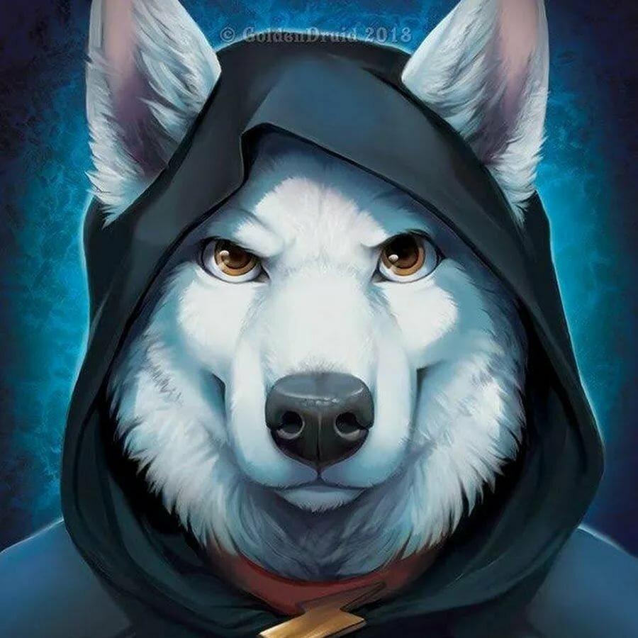 было крутой волк в картинках показала себя