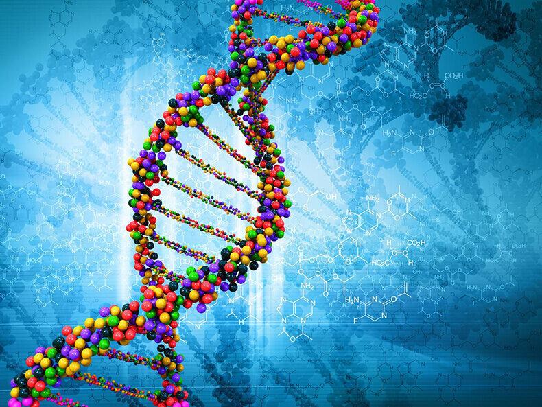 Если извлечь ДНК из одной клетки человеческого организма и растянуть ее в одну линию, то сложится тонюсенькая молекула в длину примерно 2 метра