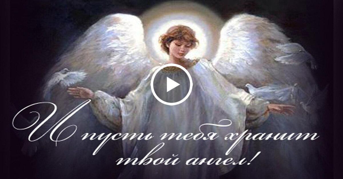 фотографа ангела хранителя в дорогу анимация организм устроен