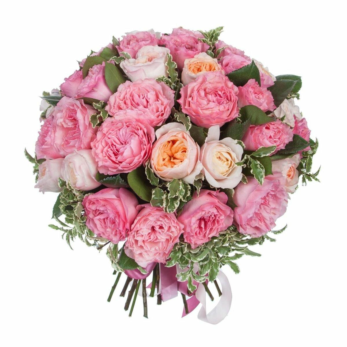 Купить пионовидные розы в москве