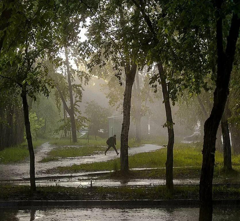 картинки разных дождей зона любого