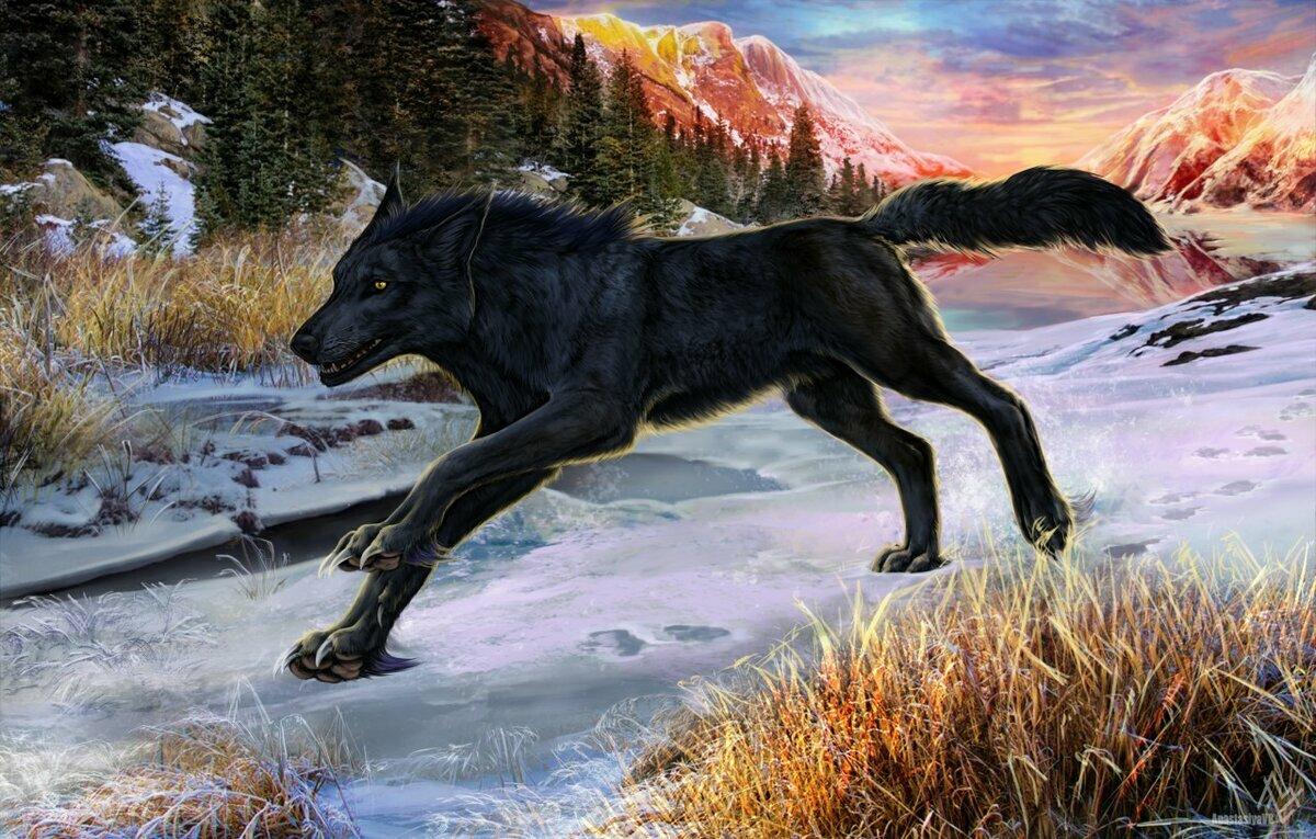 картинка черного волка и белой волчицы белый лебедь болгарским