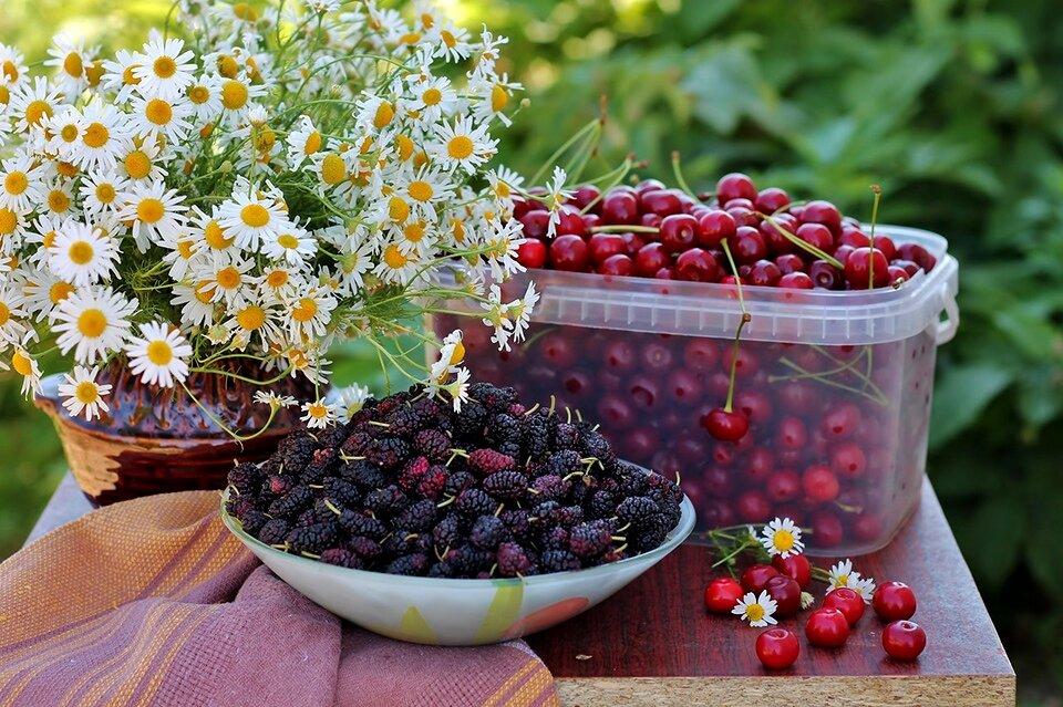 картинки июньские ягоды мод
