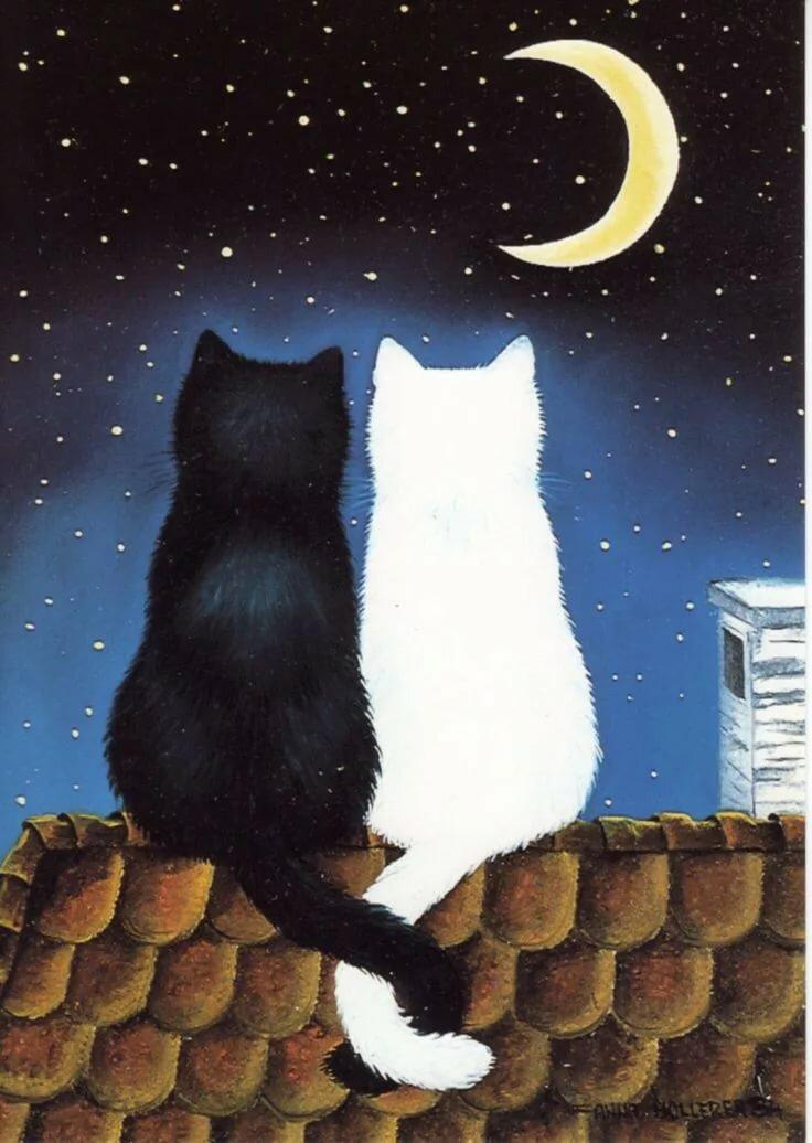 Картинки, прикольные картинки кот на крыше