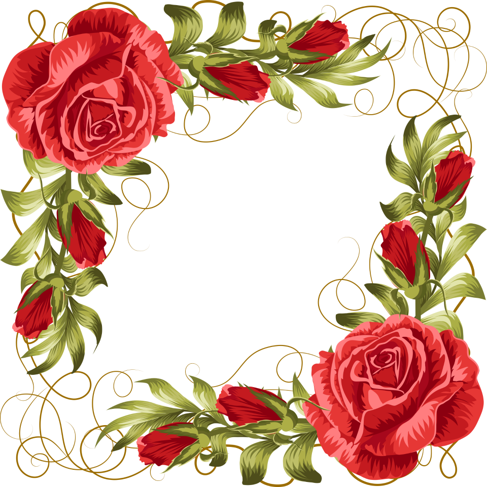 сорта рамка картинка с розами уже было сказано