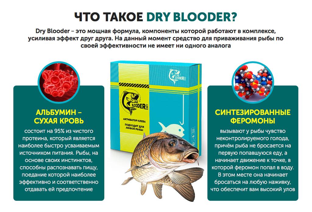 Сухая кровь Dry Blooder в Кисловодске
