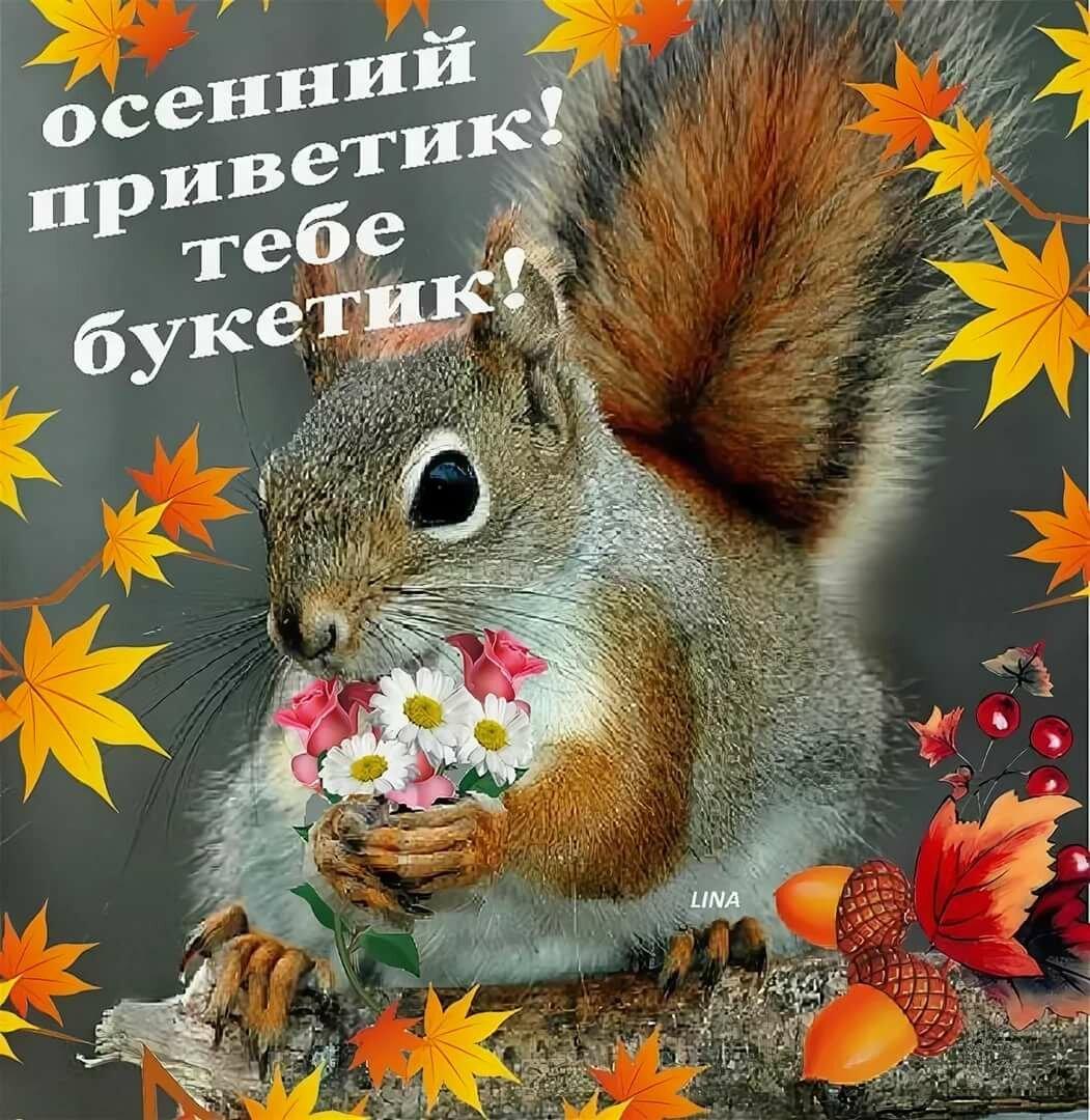 Осенний приветик для тебя картинки