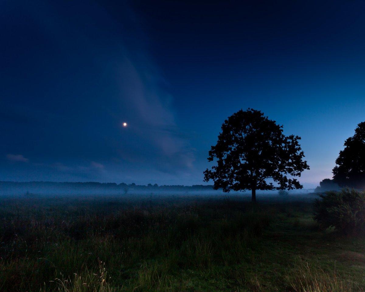 Фотографии и картинки ночь