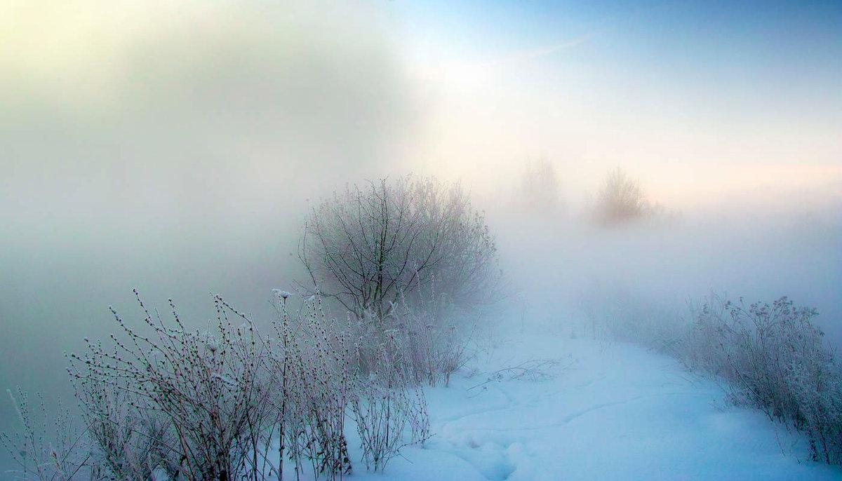 Туман на снежном поле фото