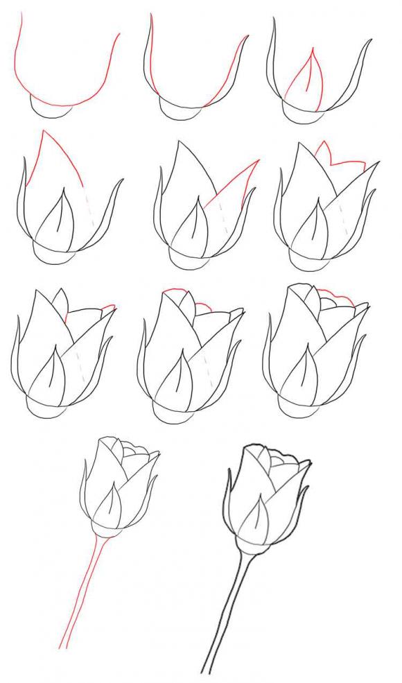 Рисунки карандашом для срисовки очень легкие и красивые для начинающих поэтапно, днем