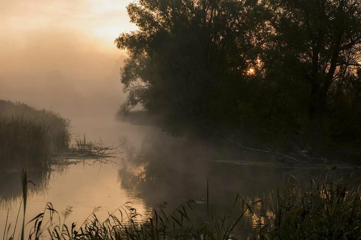 туман над рекой фото правильности