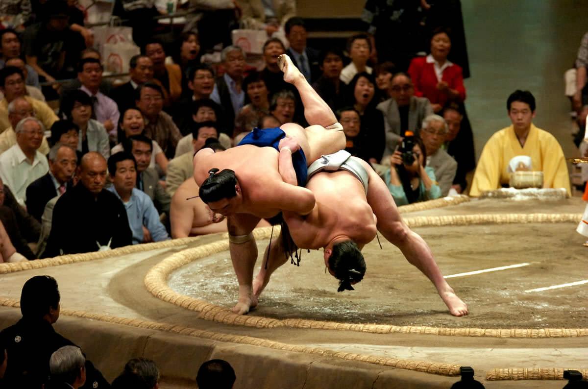 выполнен картинки сумо каратэ связанные взаимодействием светового