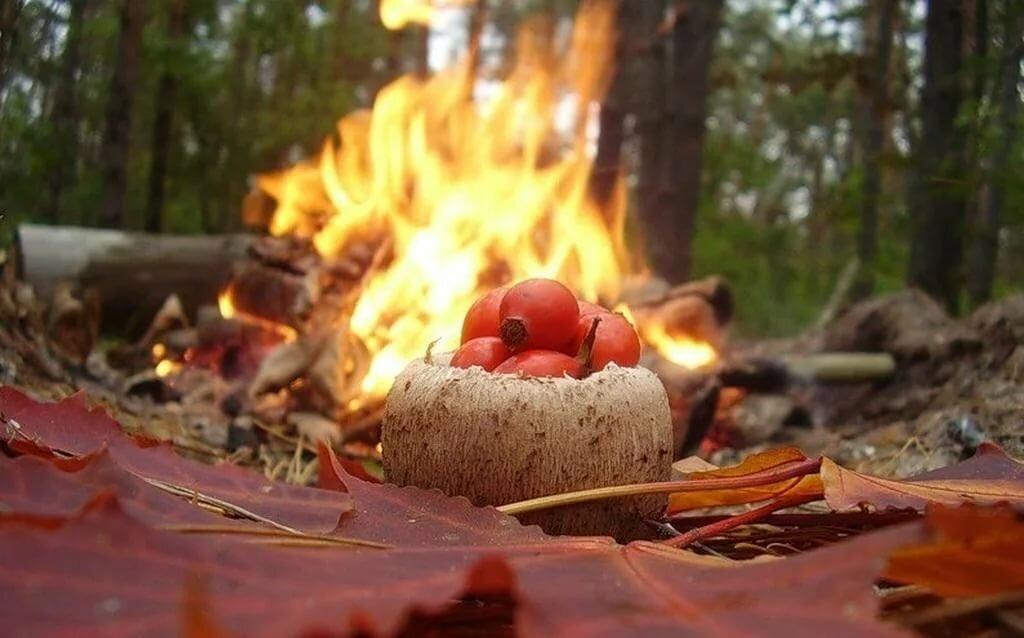 Ритуалы с костром