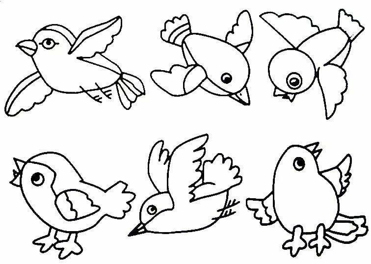 Картинки птица раскраска для детей