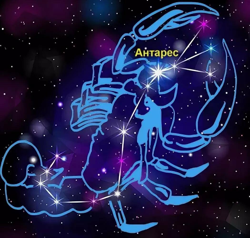 модные рисунок знака зодиака скорпион по звездам запечатлеть эмоции
