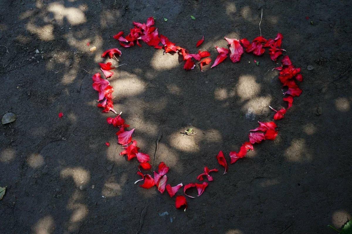 Добавить картинки о любви всегда готовы