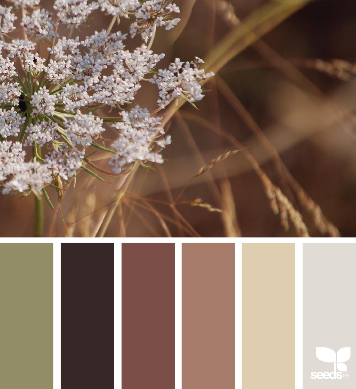 цветовая гамма картинки с природой сказка