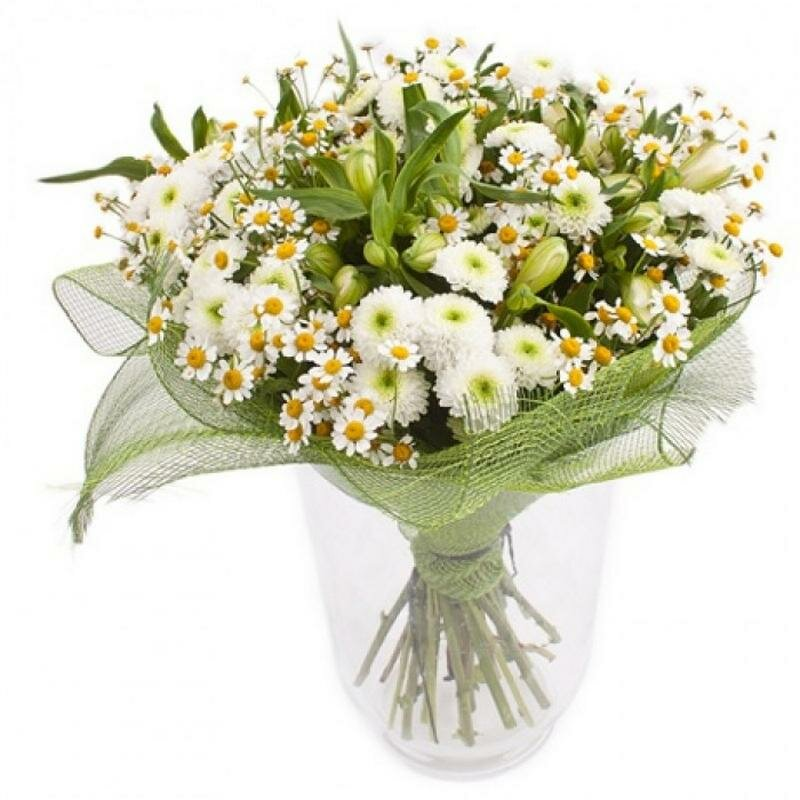 Купить маленький букет ромашек в челябинске, цветы