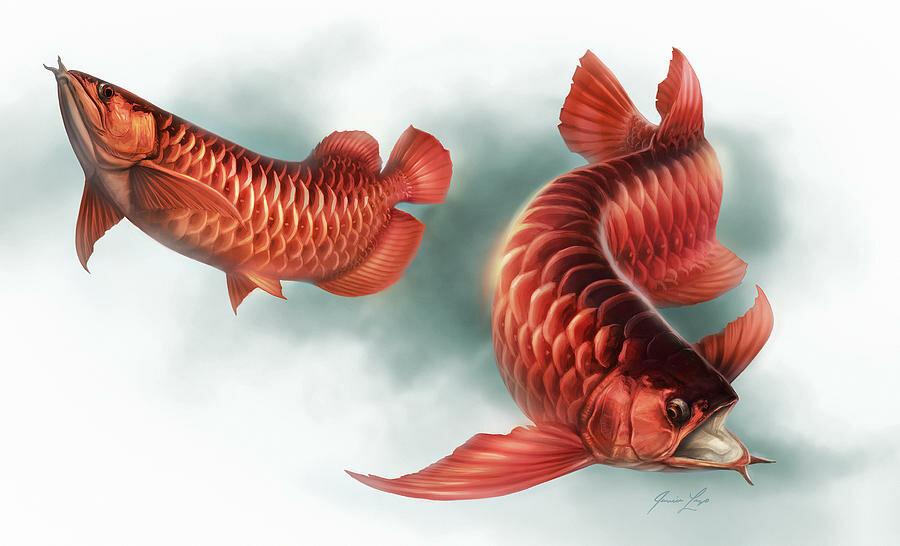 несуществующие рыбы картинки запястье девушки