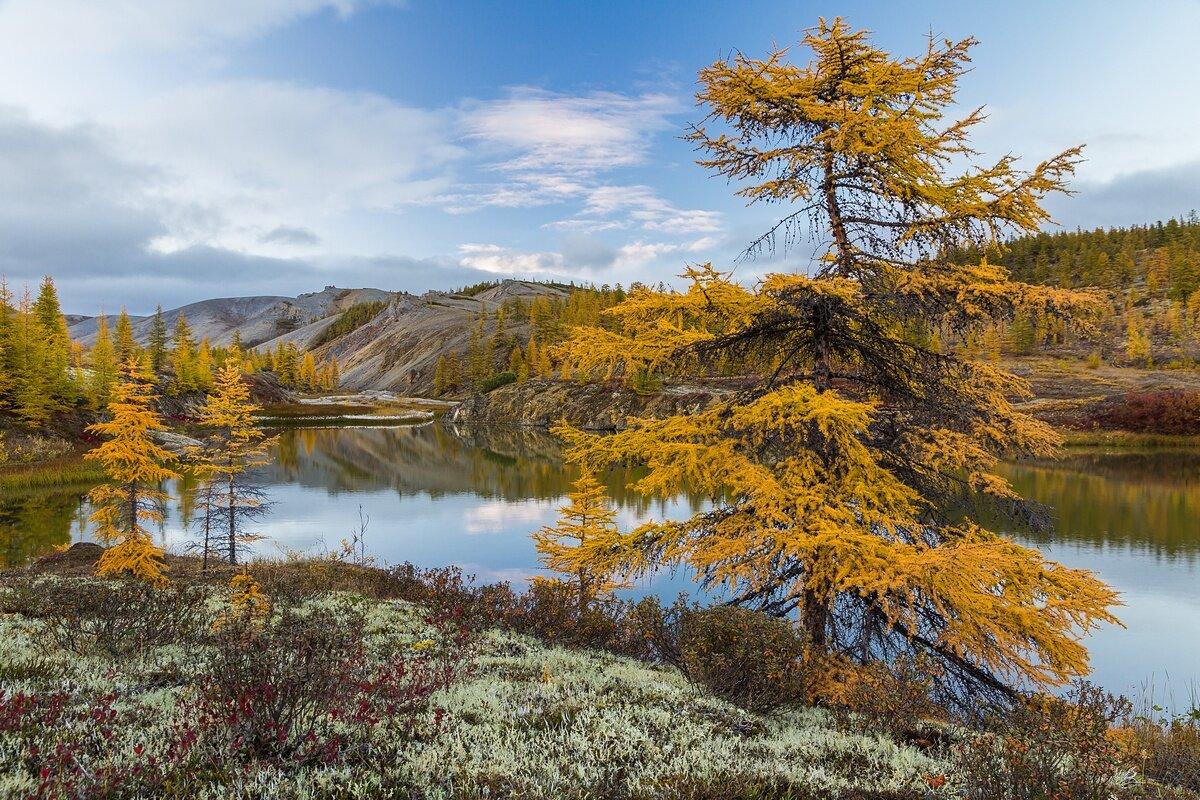 картинки о якутской природе первые