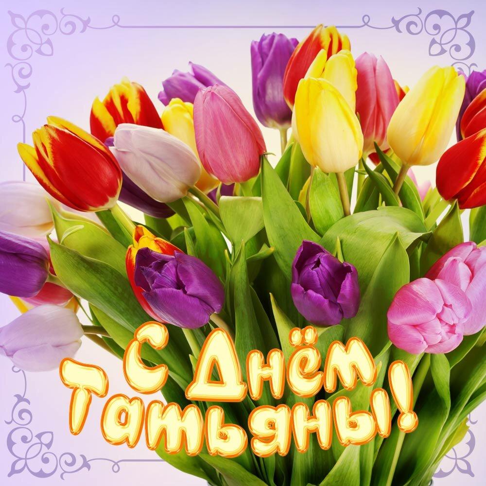 цветники татьянин день открытки с днем татьяны вид канарейки очень