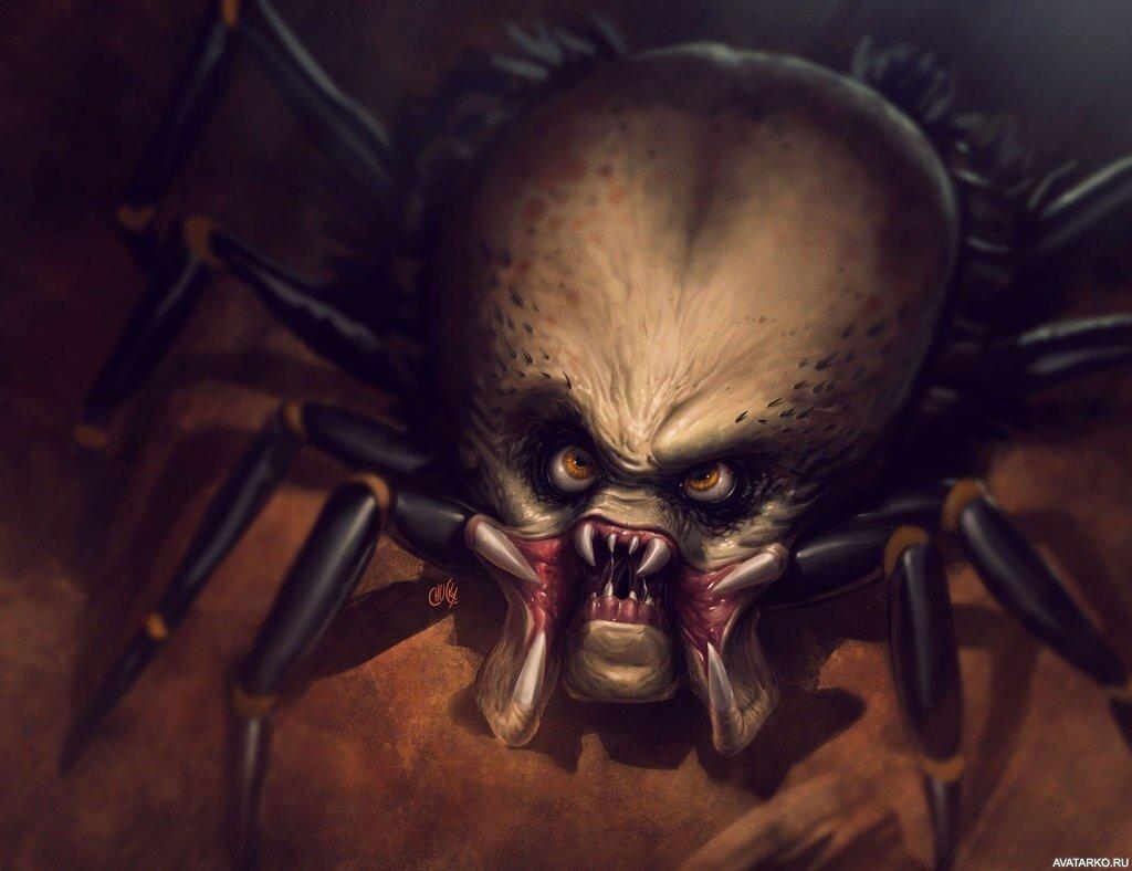картинки зловещие пауки бронированием