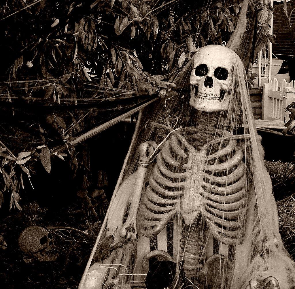 Картинки скелетов живых